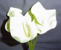 Calla Lily - Large - Cream