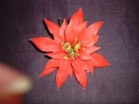 Large Poinsettia Pick