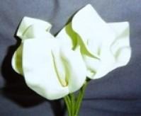 Calla Lily - Mini - Ivory