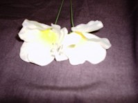 Polyester Christmas Rose - White - Yellow