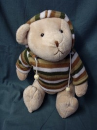 Teddy Bear with Hood and Jumper