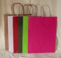 22 x 18 x 8 cms - Paper Carriers - 12 Colours -Twisted handles