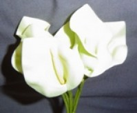 Calla Lily - Large - Cream
