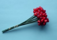 Hollyberry on Wire - Red