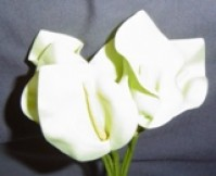 Calla Lily - Mini - Light Green